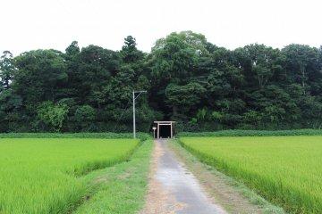 神服織機殿神社外的入口