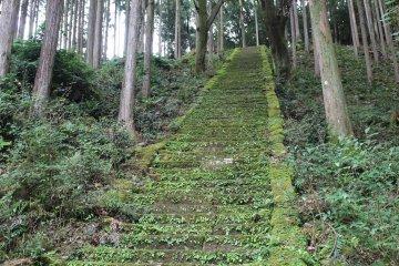 下山前最後的石階