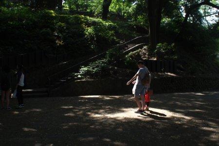 Cicada di taman Motomachi