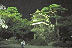 Замок Маруока ночью