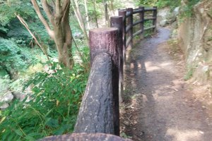 A fenced in hiking trail makes this a family friendly hike