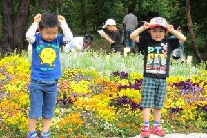 5 мая - Праздник мальчиков в Японии