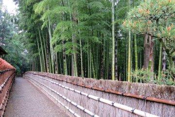 Проход в японскому дому Кобунтэй