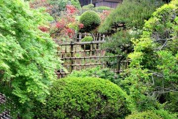 Дом Кобунтэй и сад