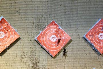忍忍者商品店铺中的忍者飞镖的投射距离。