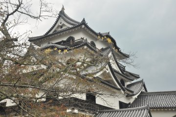 The unmistakable castle of Hikone