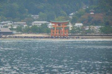 Hiroshima, and Miyajima Island