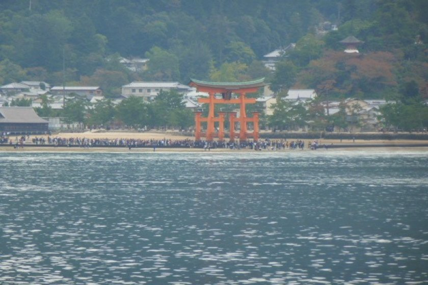 Torii from a distance