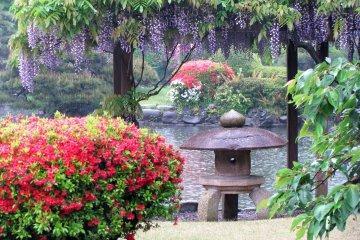 Токийский Парк Синдзюку в дождливый день