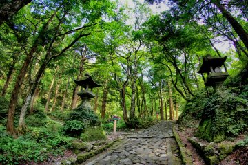 The 700 meter long natural stone path