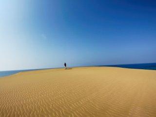 สายลมสร้างสรรลวดลายสวยๆ บนเนินทราย