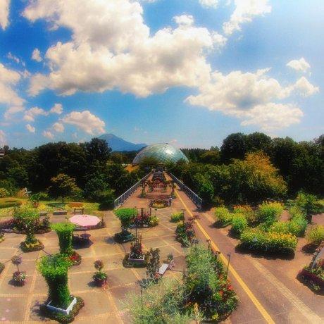 Taman Bunga Tottori Hanakairo