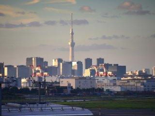 Tokyo Sky Tree dari dek observasi