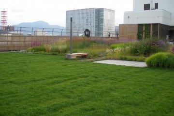 Sky Garden 12