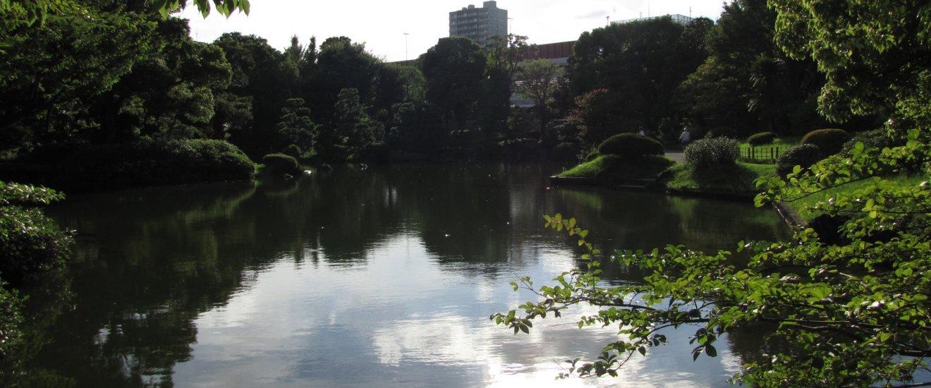 A quiet scene in the gardens