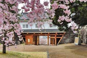Maizuru Castle Park near Kofu Station in Yamanashi