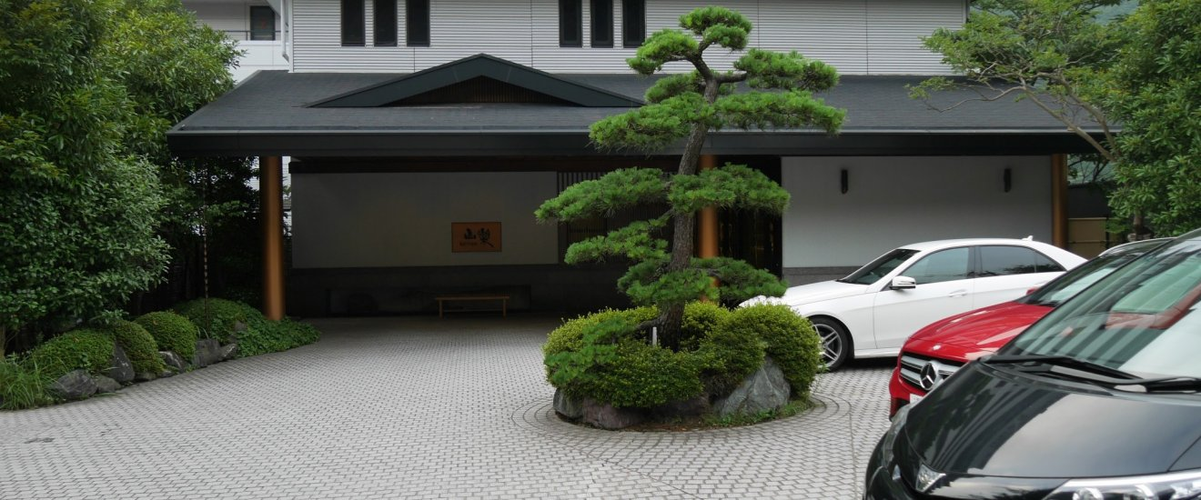 Classic pine tree in the drive-in entrance.