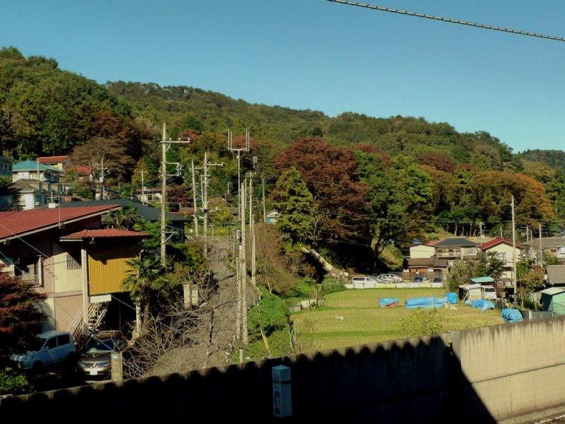 วิวจากสถานีทะคะโอะซานงุชิ