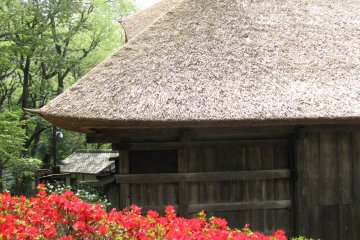 Most of old houses have straw roof