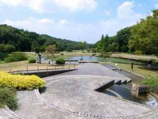 สวนป่ามิคิยะมะเป็นสถานที่งดงามสำหรับการหาเห็ด