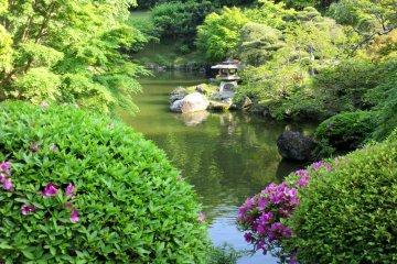 Ещё один вид японского сада