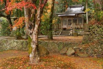 Takijiri-oji-Gateway of the Nakahechi-in Autumn