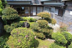 宿泊室から眺める春の中庭