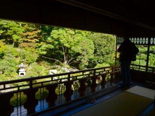主屋2階より眺める庭園