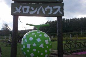 Un Enorme Melon