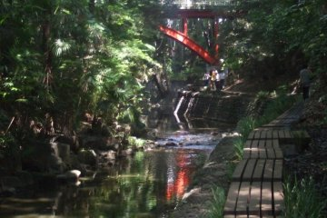 Take A Calming Valley Walk in Tokyo