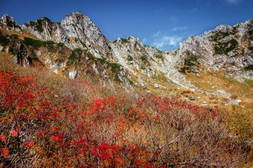 Mount Kiso-koma's Autumn Colors