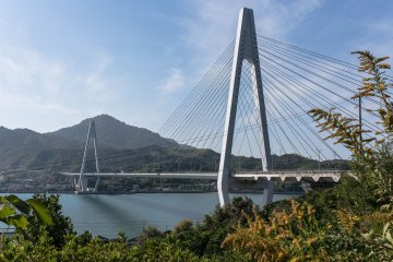 Ikuchi Bridge was the longest cable stayed bridge in the world at the time of completion