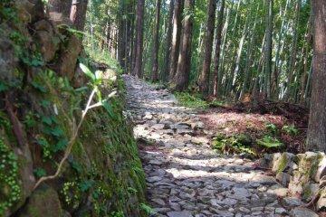 """Kumano Kodo- """"Way of St. James"""" di Jepang"""