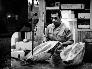 Замороженный тунец разрезается как древесина