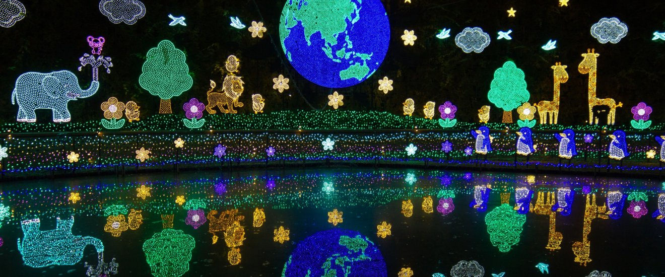 Ashikaga Flower Park Illumination Tochigi Japan Travel
