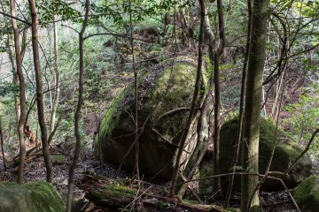 Large boulders were common along the way