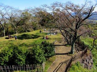 코보 공원은 가을에도 푸르게 보인다!