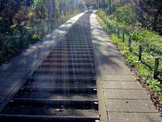 태양이 코보공원으로 올라가는 계단을 비춘다