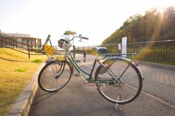 The rental bicycle