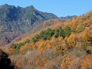 Núi xanh gồ ghề tạo thành một bối cảnh cho màu sắc mùa thu