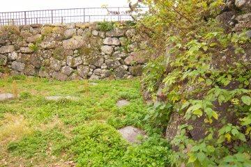 Интересно рассматривать замковые стены, заросшие мхом
