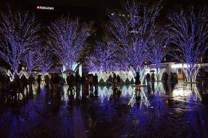 Absolutely stunning Christmas lights outside JR Hakata Station