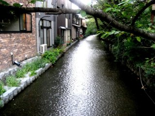 Many townhouses and restaurants have beautiful views of the canal at Kiyamachi Kyoto just south of Shijo Street