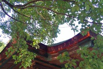 Konpirasan by the side