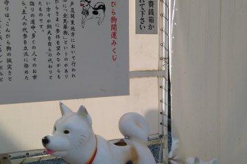 Konpirasan also the shrine for dogs
