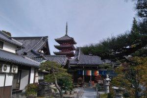 Shidoji