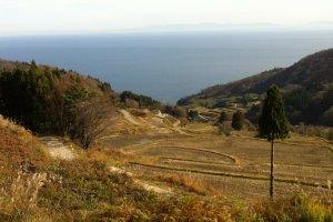 Depuis le sommet de Tanada, la perspective sur les cultures se jetant dans la mer est saisissante.