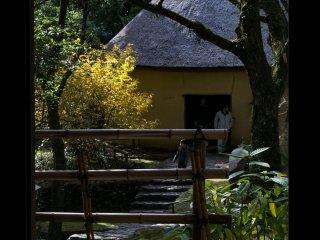 A sugar processing hut