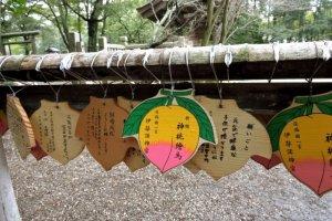 แผ่นไม้เอะมะรูปลูกพีชของศาลเจ้าอิซะนะกิ จินกุ (Izanagi Jingu) บนเกาะอะวะจิ