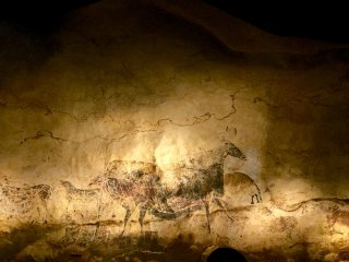 'Black bulls' is one of the main attractions of Lascaux exhibition in Tokyo